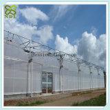 O arco conduz casas verdes de produção vegetal