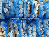 중국 Normal White Garlic 200g/4kg Mesh Bag