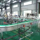 De Installatie van de Productie van het Sap van de Fles van het huisdier in China