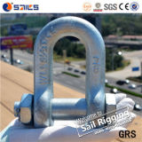 Wir Type Bolt und Nut Steel Drop Forged Safety Chain Shackle