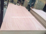 Madeira compensada de Prices, Cheap Plywood de Sheets, Packing Plywood