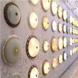 Het Licht van het Plafond van het glas (92622-2)