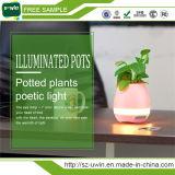 LEDライトが付いている魔法のBluetoothのスピーカーの植木鉢スマートな音楽プラスチック植木鉢
