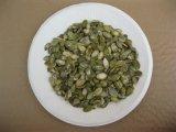 Crecido sin cosecha de los núcleos del germen de calabaza del shell la nueva