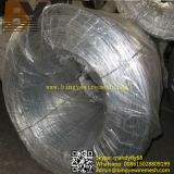 Горячее Dipped Galvanized Flat Oval Wire для Cattle Farm