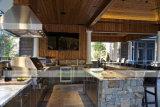 Мебель кухни нержавеющей стали 304 напольная в саде (WH-D415)