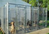 De gelaste Kennel van de Hond van de Link van de Ketting van de Kooi van de Hond