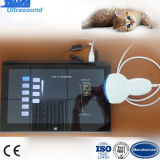 USB Probe를 가진 접촉 Screen Tablet Ultrasound Scanner