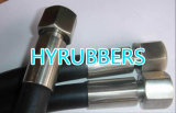 Hydraulisches Hose Assembly, High Pressre Hose mit Fittings