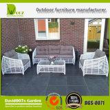 Sofá seccional de los muebles al aire libre al por mayor, conjunto del sofá de los muebles Dgs-0071