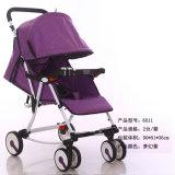 Baby-Spaziergänger, Baby-Träger, Baby-Buggy, Kinderwagen