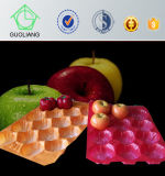 2016 Hauptleitung Promotion Europa Market Popular Food Grade Polypropylene Fruit Nest Tray Made in China