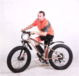 新しいデザインリチウム電池が付いている熱い販売モーターEバイク