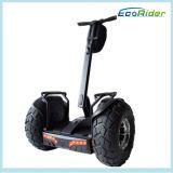 motorino elettrico di golf del vagone per il trasporto dei lingotti del litio 72V di Samsung della E-Bici di 4000W Ecorider