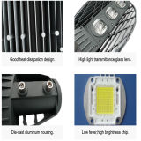 Luz ao ar livre da estrada da rua do diodo emissor de luz da ESPIGA da raquete/lâmpada leve da estrada
