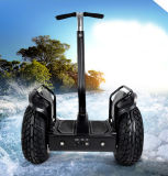 19 pulgadas de dos ruedas de coches de golf Sport Electric Vehicle Scooter