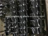 Il grado LR degli accessori per tubi A815 S31803 90 Elbow