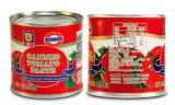 トマトのりのプラントトマトのりの工場機械によって缶詰にされるトマト機械