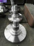 Kundenspezifische Rollen-Welle des Stahl-42CrMo4 4140 für Ausschnitt-Maschine