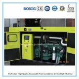 100kw Дизель Электрический генератор Набор для промышленного и домашнего использования