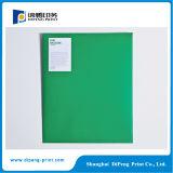 Impresión especial del folleto del color de la dimensión de una variable que corta con tintas