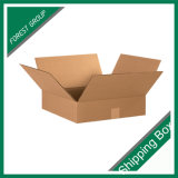 Zoll gedruckter Verschiffen-Kasten-Werbungs-Kasten