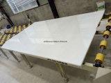 Venda quente da telha/laje/etapas de mármore brancas puras naturais de China/bancada