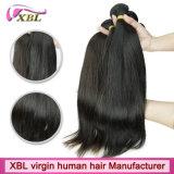 Capelli umani di Remy del Virgin brasiliano naturale dell'azienda dei capelli umani