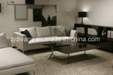 Mobilia moderna del sofà del cuoio del salone di stile (D-71-C & D-71-H)