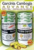 Do Garcinia da guta do extrato de Hca Frutaplantalife da dieta dos comprimidos perda 100% de peso