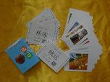 2017 tarjetas educativas Yh02 del PVC de la impresión en color 30wire