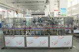 Máquina que capsula de relleno que se lava vendedora caliente del agua de botella