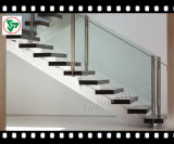 vidrio Tempered de la escalera de 8-10m m (1996:2208 de AS/NZS)