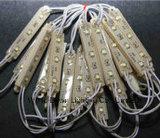 좋은 품질은 보장 2 년 SMD 2835 3 LEDs IP56 LED 모듈을 방수 처리한다