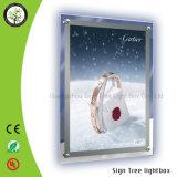 Caixa leve de cristal do frame acrílico lateral dobro do poster