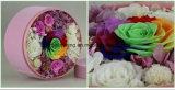 Pedazos del regalo del día de tarjeta del día de San Valentín en del rectángulo un coto preservado venta al por mayor de las Preservar-Fresco-Flor-Regalo-Pila de discos-Inmortal-Flor-Nunca-Marchitar-Colorido-Rosas de las rosas barato