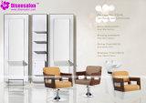 De populaire Stoel Van uitstekende kwaliteit van de Salon van de Stoel van de Kapper van de Spiegel van de Salon (P2046F)