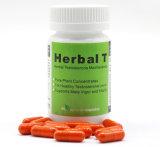 Capsule de fines herbes d'extrait de champignon de couche de T Cordyceps pour la santé des hommes