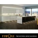 Ая самомоднейшая новая таможня Tivo-0141h конструкции неофициальных советников президента