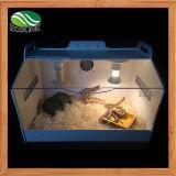 Conteneur transparent acrylique de Terrarium de reptiles pour le serpent d'araignée de caméléon de lézard ou d'autres reptiles et amphibies