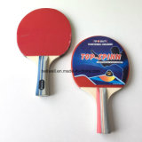 Batterie de tennis de table professionnelle à vendre
