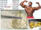Esteroides Tren Enanthate USP31 Paraabolan estándar 10161-33-8 de Tren del edificio del músculo de la pureza del 99%
