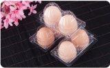 新しい卵-満たされたプラスチック包装ボックスの2部分