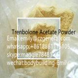 Trenbolone Aceateのステロイドの粉のステロイド