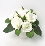 Горячие продавая искусственние цветки Rose в пластичном баке для украшения в доме/офисе