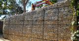 Caixa galvanizada sextavada de Gabion do engranzamento de fio de Sailin