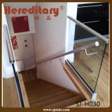 Della piattaforma di alluminio inossidabile di 304 inferriata di vetro Steel+ esterna (SJ-H030)