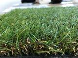 صنع وفقا لطلب الزّبون عشب اصطناعيّة مع [ك] شكل