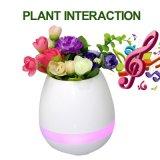 Flowerpot real inteligente esperto do jogo do toque da planta dos potenciômetros de flor da música de Bluetooth