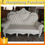 Europe Style Leisure Sofa for Sale